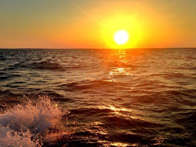 在鳕鱼角的日落 免版税库存照片
