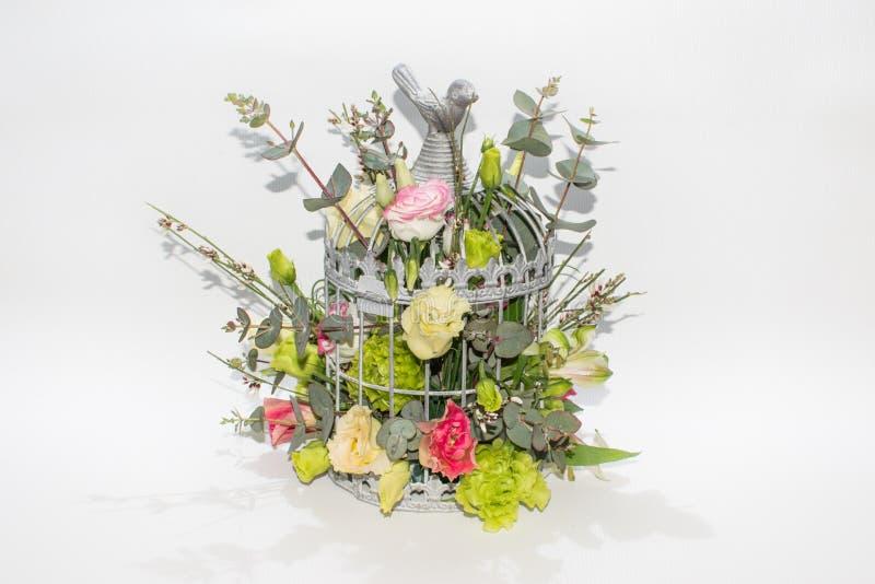 在鸟笼的花在白色背景 库存照片