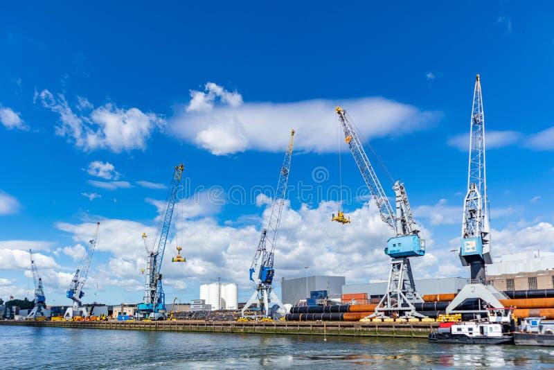 在鹿特丹,荷兰港的起重机  后勤学事务,货物装货卸载 库存图片