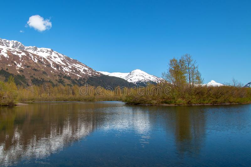 在麋舱内甲板沼泽地和Portage小河的山反射在安克雷奇阿拉斯加美国附近的Turnagain胳膊 免版税库存照片