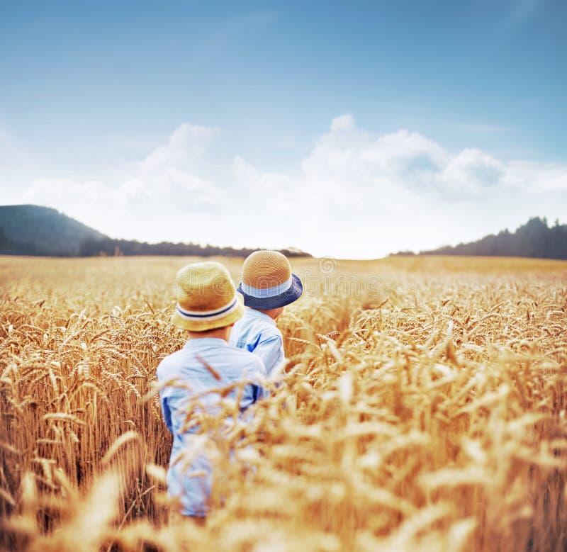 在麦地中的两个兄弟 库存照片