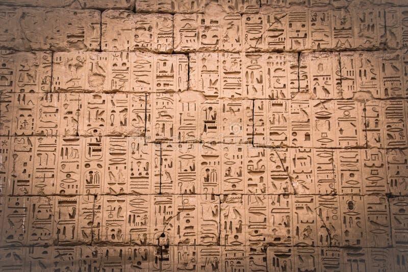 在麦地那波布寺庙的埃及古老象形文字  库存图片