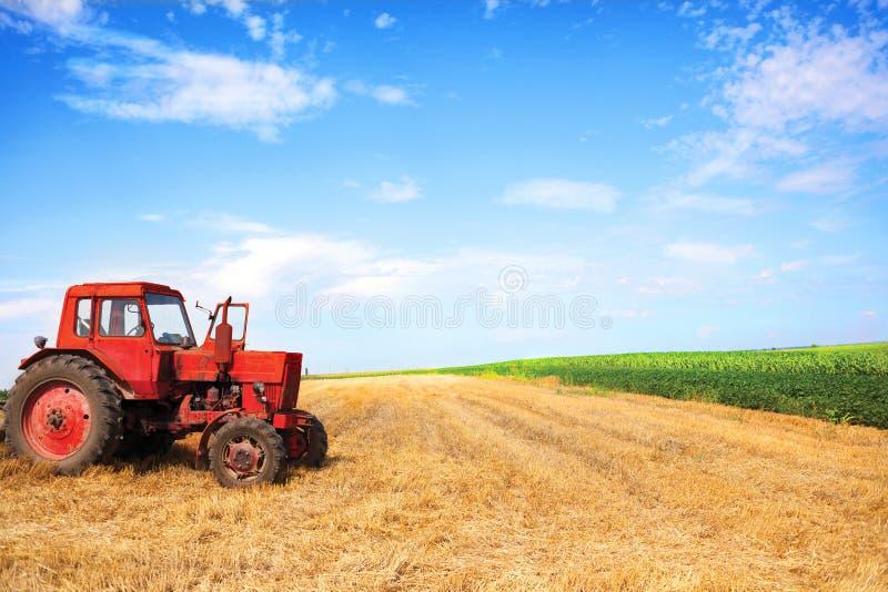在麦子收获期间的老红色拖拉机在多云夏日 免版税库存图片