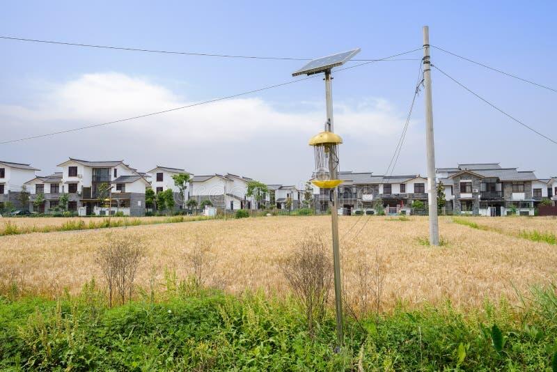在麦田的太阳杀虫灯在村庄前在晴朗的s 免版税库存图片