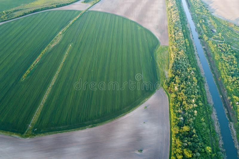在麦田的灌溉系统 库存照片