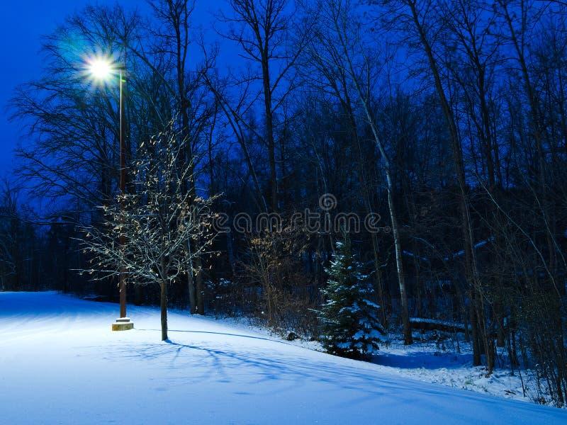 在黄昏的冬天场面 路灯到底照亮树和雪 免版税图库摄影