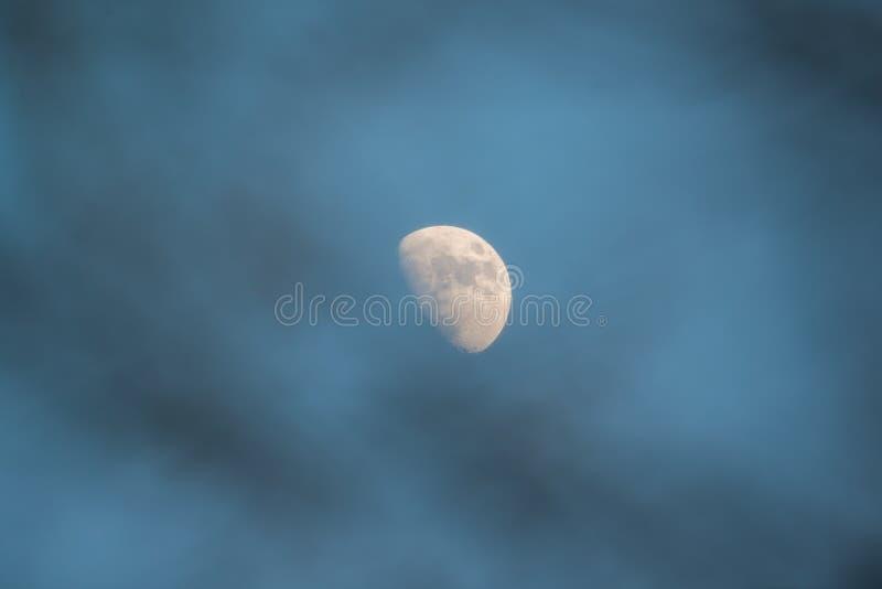 在黄昏的美丽的详细的对月发射通过在前景的树枝- 2017 2月5日,如被看见从明尼苏达,美国 库存照片