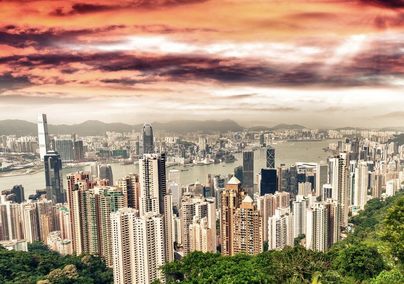 在黄昏的香港惊人的地平线 免版税库存照片