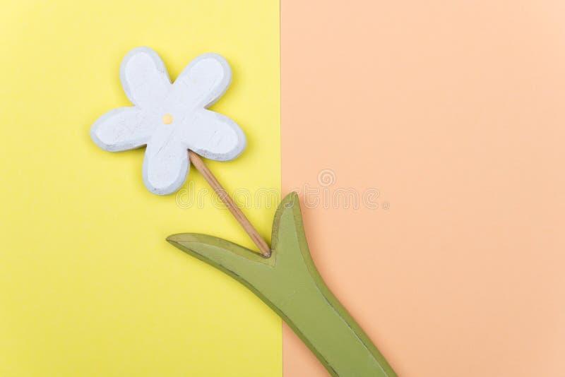 在黄色和橙色地面的木延命菊花 库存图片
