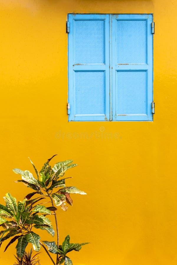 在黄色墙壁的一个蓝色窗口 库存图片