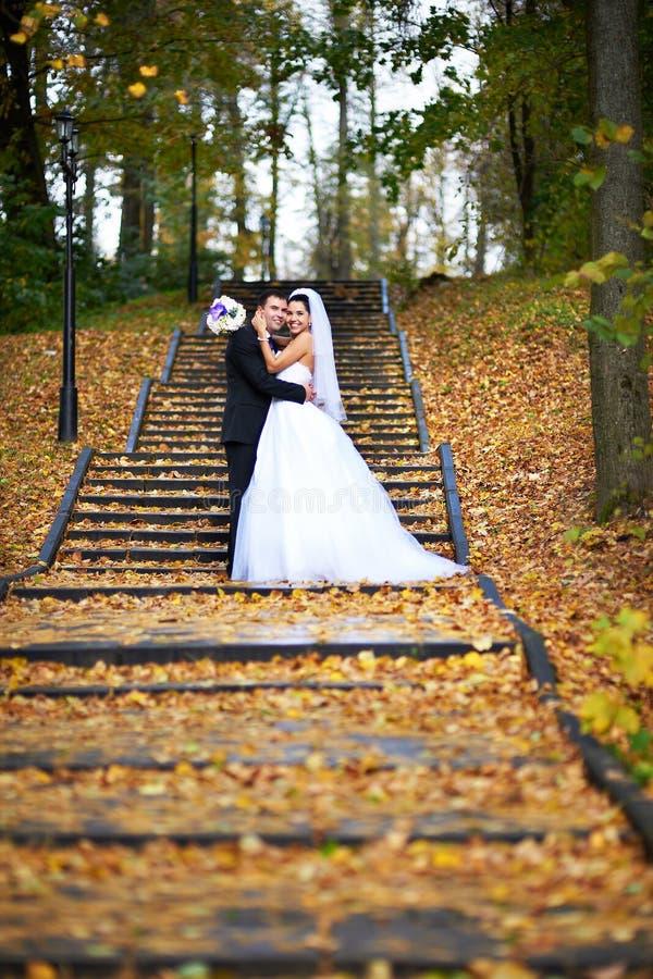 在黄色秋天叶子的愉快的新娘和新郎 库存图片