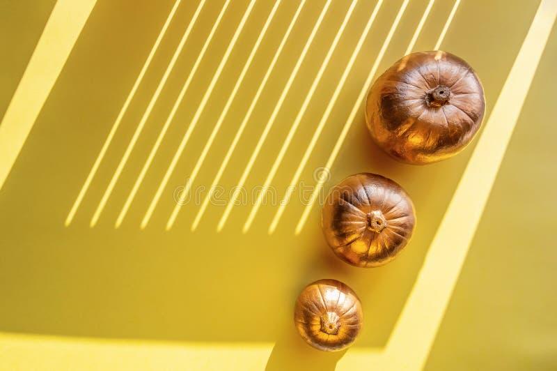 在黄色背景的三个金黄装饰南瓜 万圣节概念 坚硬阴影,阳光 库存照片