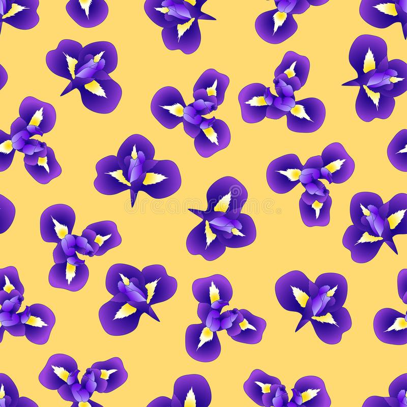 在黄色背景的深蓝紫色虹膜花 也corel凹道例证向量 库存例证
