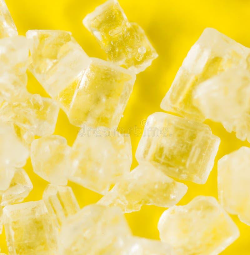在黄色背景的糖 2009朵超级花宏观的夏天 免版税库存照片