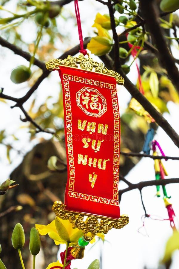 在黄色花背景的越南和农历新年装饰  题字被翻译-伟大的知觉 免版税库存图片