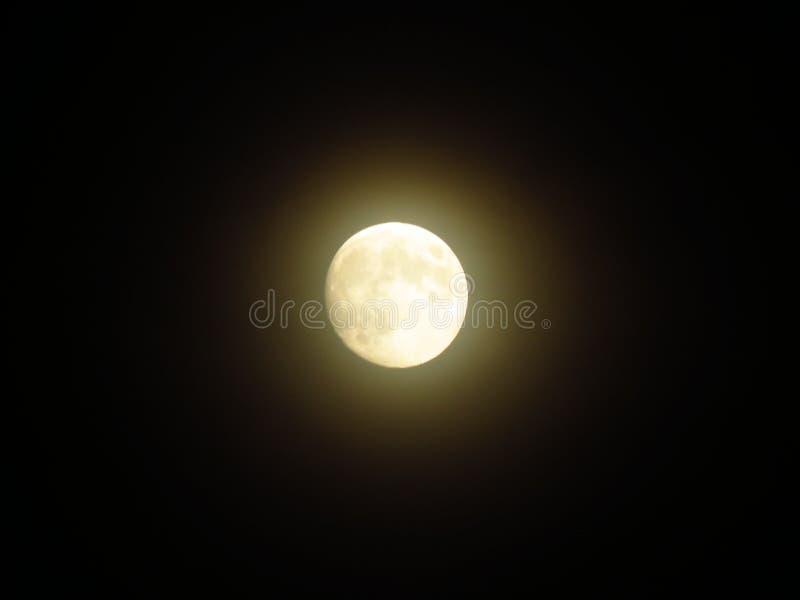 在黑天空的发光的充分的白色月亮;清楚的夏夜 黑天空 黑暗的剪影 r 库存图片
