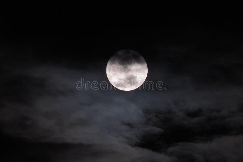 在黑天空的月亮在晚上 免版税库存照片