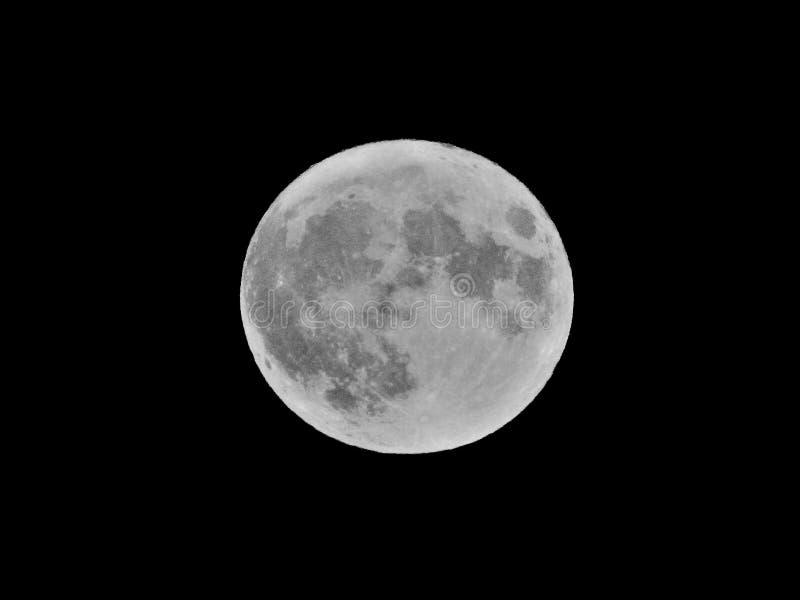 在黑天空的银色超级月亮 免版税库存照片