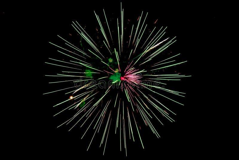 在黑天空背景的五颜六色的烟花 免版税库存照片