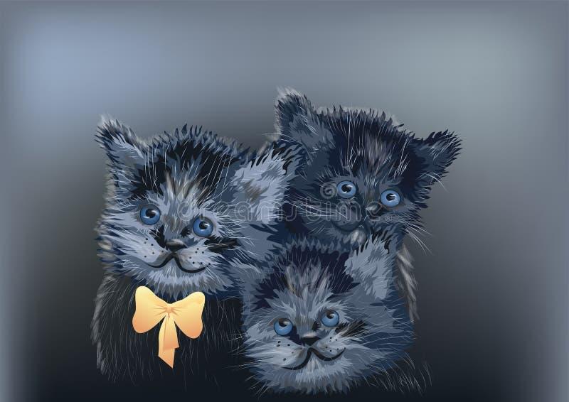 在黑暗的三只猫 皇族释放例证