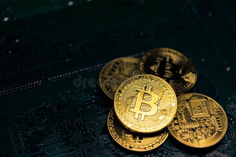 在黑暗的主板的金黄bitcoin 聚光灯和焦点在硬币 黑暗的题材图片 库存图片