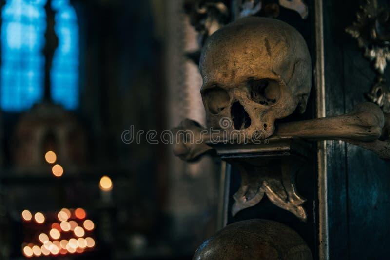在黑暗的人头骨与蓝色轻的窗口背景静物画 恐怖地方概念图象 库存图片