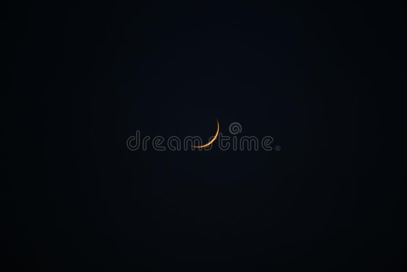 在黑暗的天空的新月 免版税库存照片