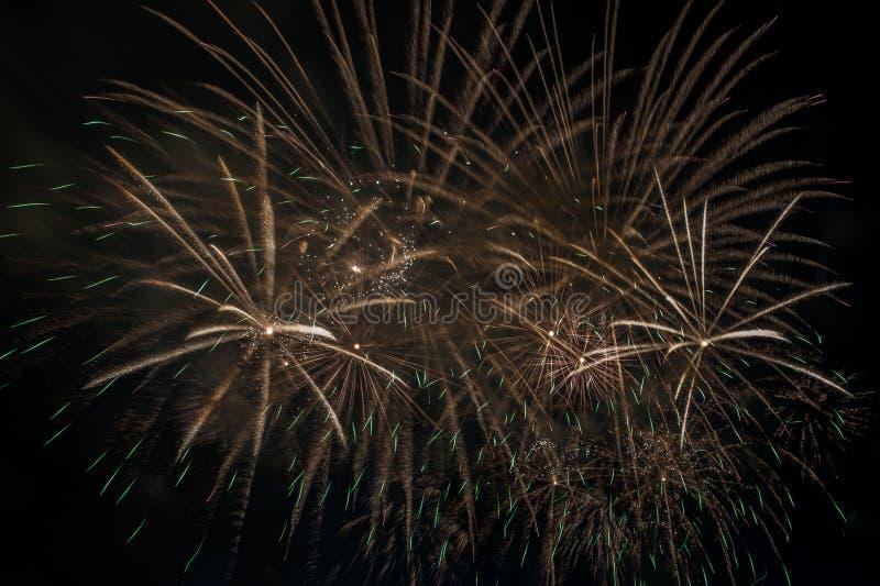 在黑暗的天空的烟花爆炸 免版税库存图片
