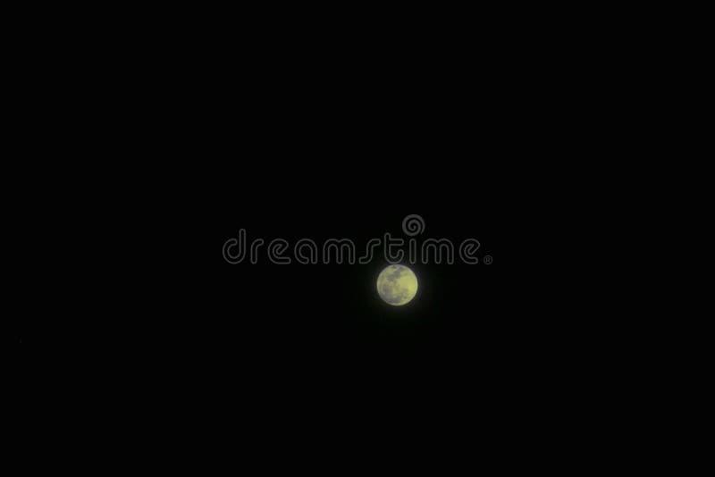 在黑暗的天空背景的满月  库存照片