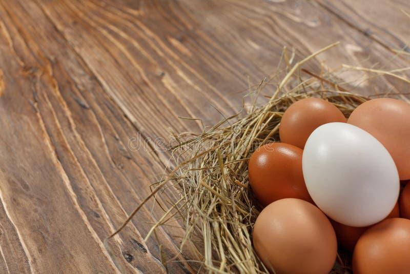 在黑暗的木背景的新鲜的村庄鸡鸡蛋 复活节随员 库存图片