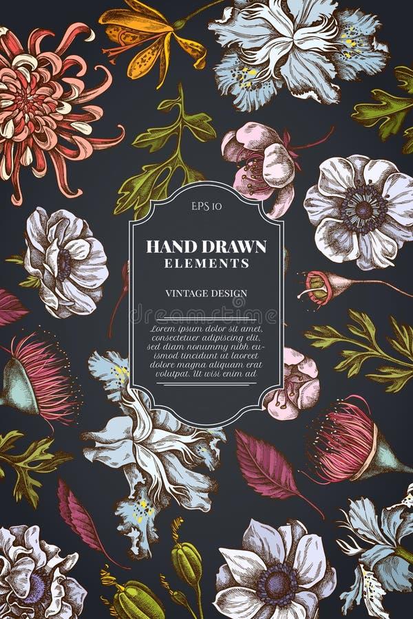 在黑暗的背景的卡片设计与日本菊花,黑莓百合,玉树花,银莲花属,虹膜japonica 向量例证