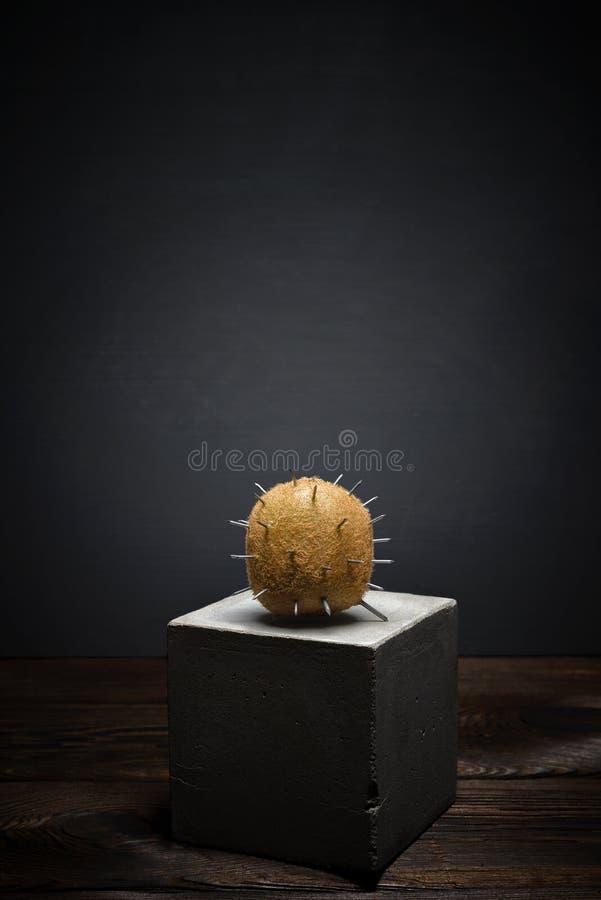 在黑暗的背景的新鲜水果在具体立场 与锋利的刺的软的粗野的猕猴桃 免版税库存图片