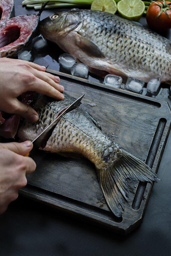 在黑暗的背景的新鲜的鲤鱼与绿色和菜 一个人切鲤鱼成在一个木板的片断 库存照片