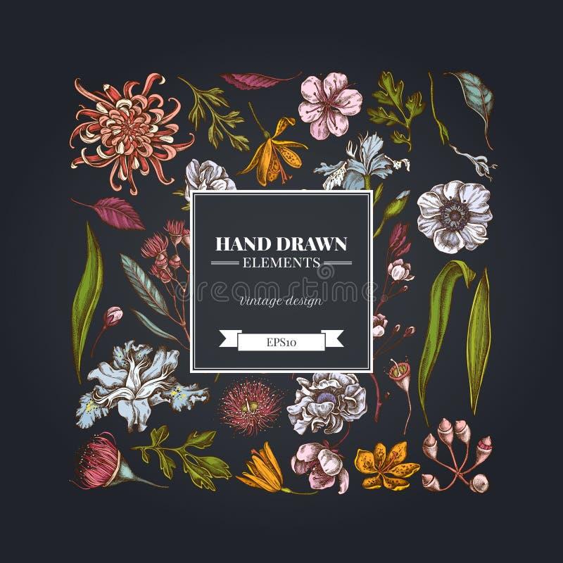 在黑暗的背景的正方形花卉设计与日本菊花,黑莓百合,玉树花,银莲花属,虹膜 皇族释放例证