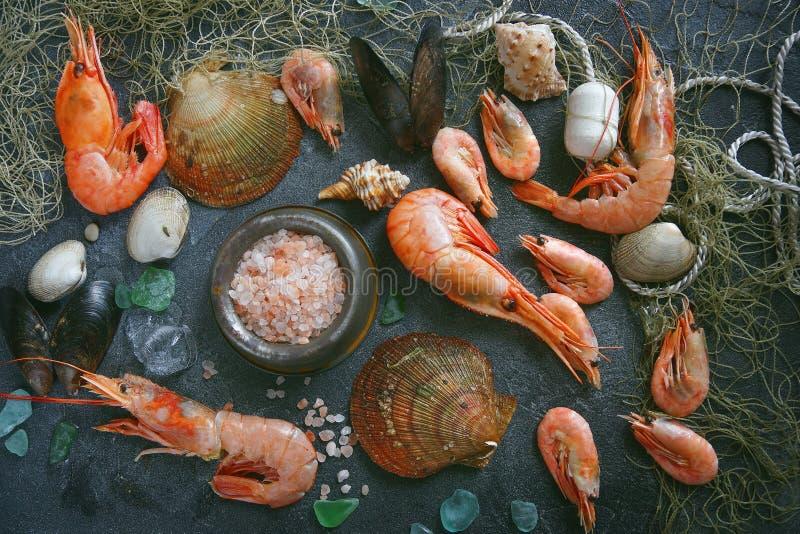 在黑暗的背景的海鲜,虾,淡菜,在黑石头的淡菜 库存照片