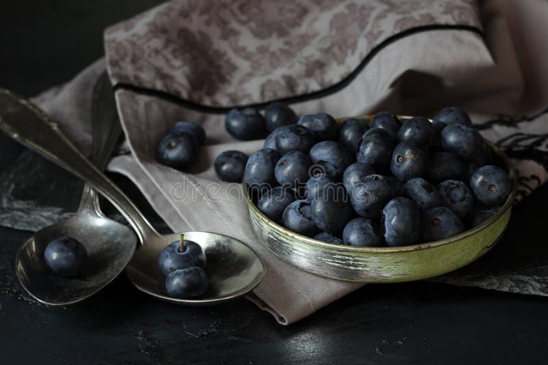 在黑暗的背景的神秘的清淡的蓝莓 库存图片