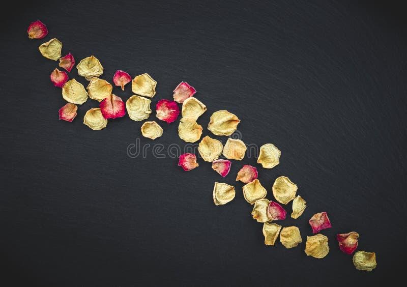 在黑板岩背景的玫瑰花瓣 库存图片