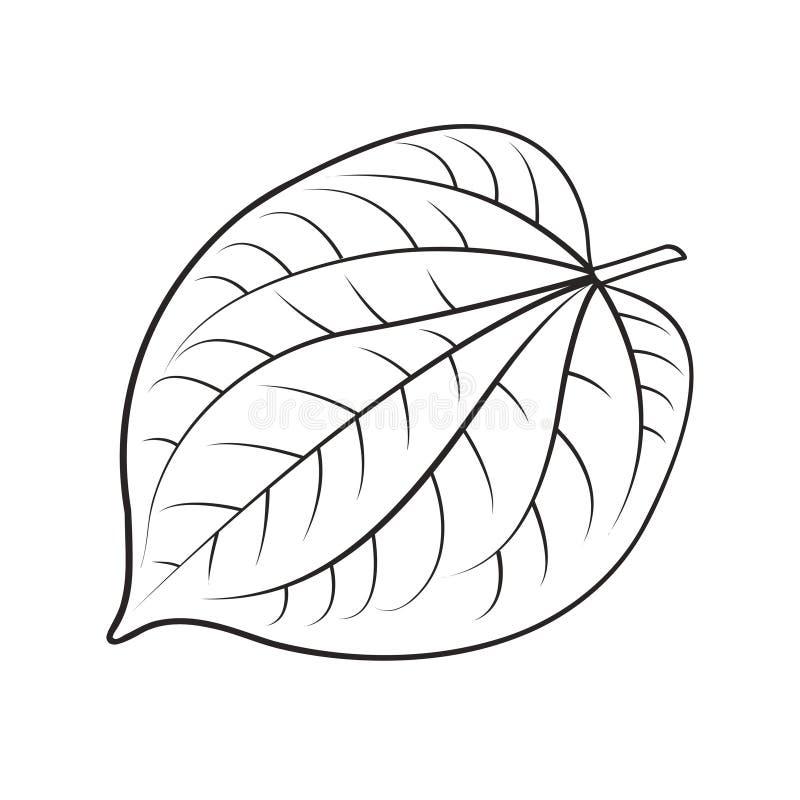 在黑概述的蒋酱之叶叶子 向量例证