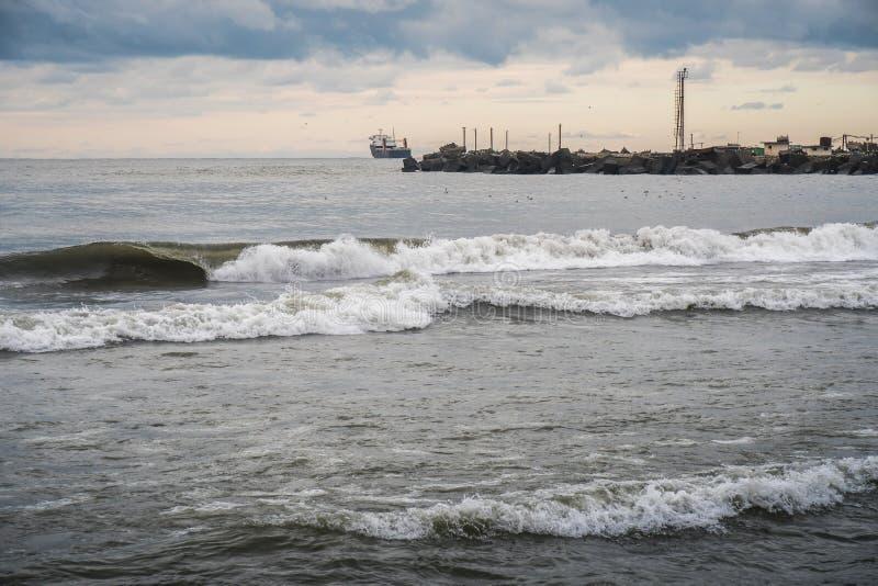 在黑海,波季,乔治亚的海鸥 库存照片