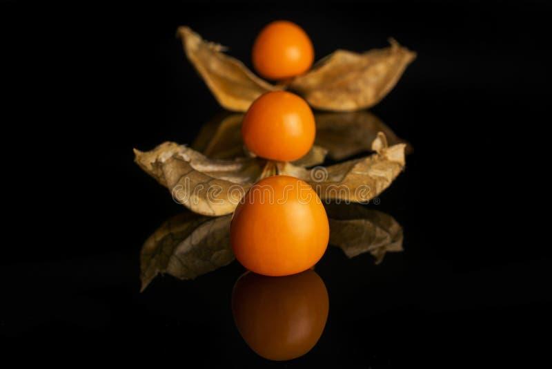 在黑玻璃隔绝的新鲜的橙色空泡 图库摄影