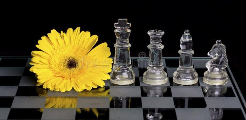 在黑白玻璃棋盘的黄色花有qu国王的, 免版税图库摄影