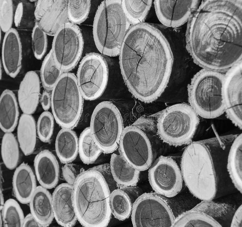在黑白的两色木片断 免版税库存照片