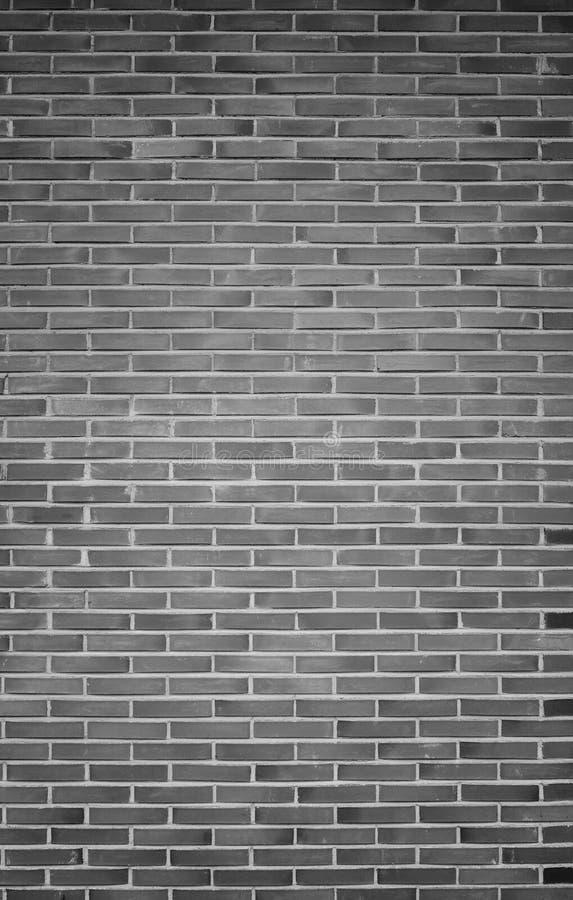 在黑白的新的砖墙背景 库存图片