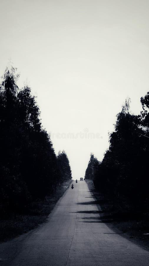 在黑白的路 图库摄影