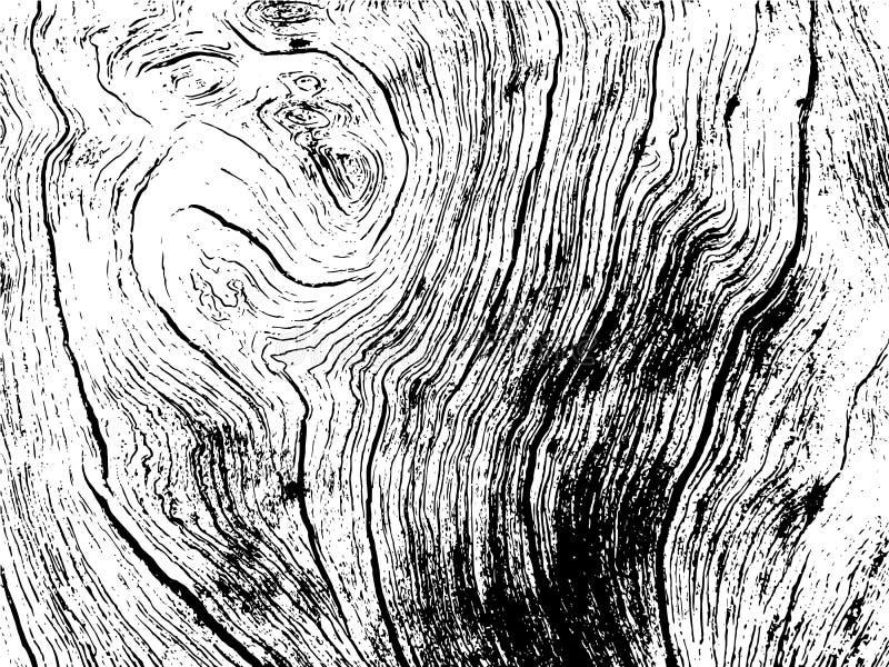 在黑白颜色的木纹理例证 土气木单色可升级的图象 向量例证