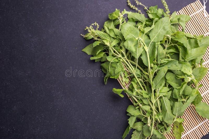 在黑石头的顶视图新鲜的绿色泰国蓬蒿叶子 免版税库存图片