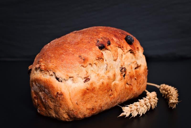在黑背景板材的食物背景有机法国全麦葡萄干面包 库存照片
