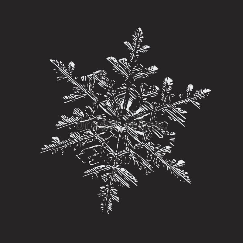 在黑背景的光滑的雪花 向量例证