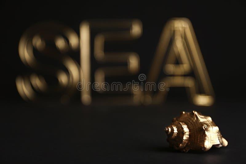 在黑背景的发光的金贝壳 图库摄影