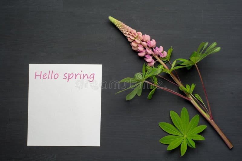 在黑背景的春天花与白纸 你好春天 免版税库存照片